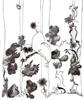 Coucou Hibou !, 2014, feutre et stylo bille sur papier recyclé, 210x297 mm