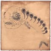 Loup, 2014, broux de noix, feutre et stylo sur papier Velin, 20x20 cm
