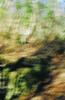 Verdun #4, photographie argentique, 65x100 cm