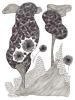 Pollen, marqueur et stylo bille sur papier velin, 210x297 mm