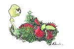 Plante carnivore, 2015, illustration aux ProMarker, 21x29,7 cm