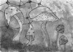 Champignons,  2016, encre de chine et feutres fins