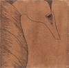 Hippocampe, 2017, broux de noix, feutre et stylo bille sur papier Velin, 21x21 cm